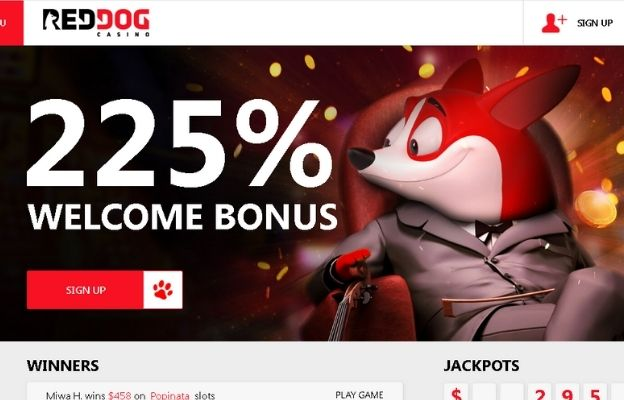 roulette bonuses red dog casino